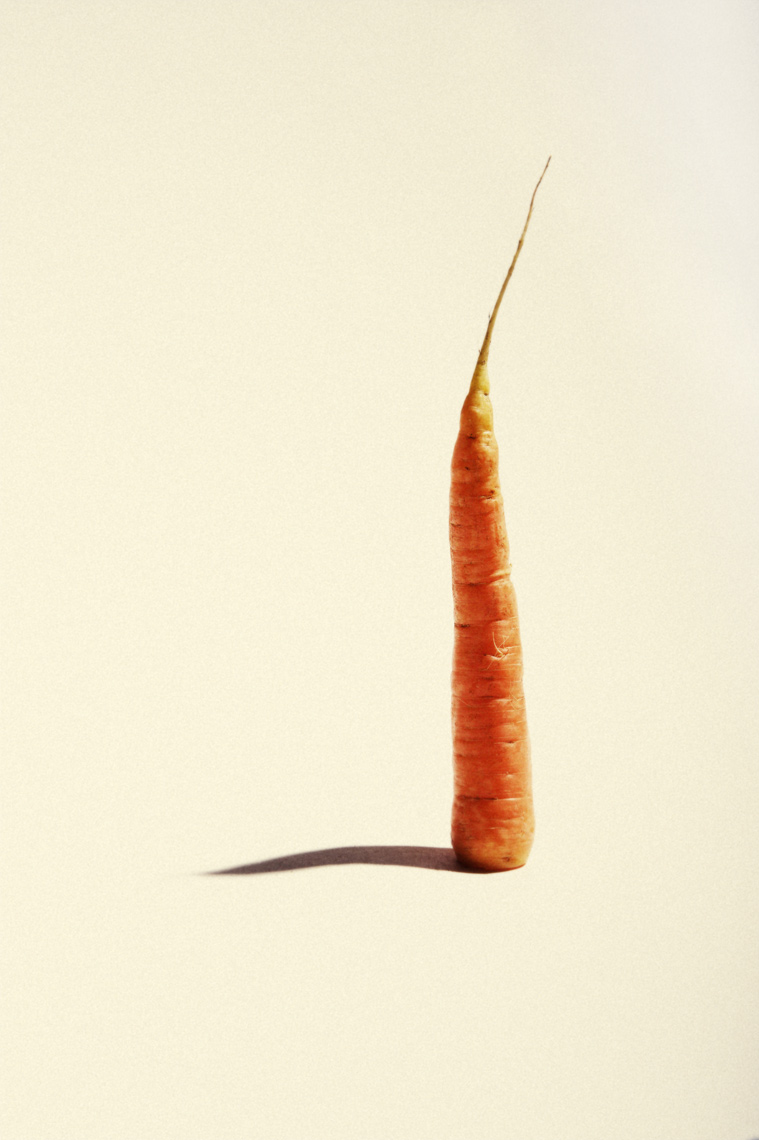 Still Life, Editorial, Advertising and Corporate Studio Photography Jacksonville, Florida  Food Carrots